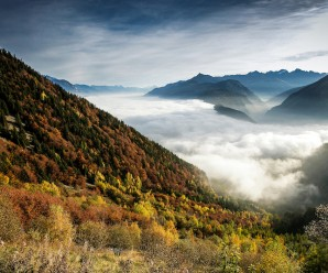 Développement territorial : paysage